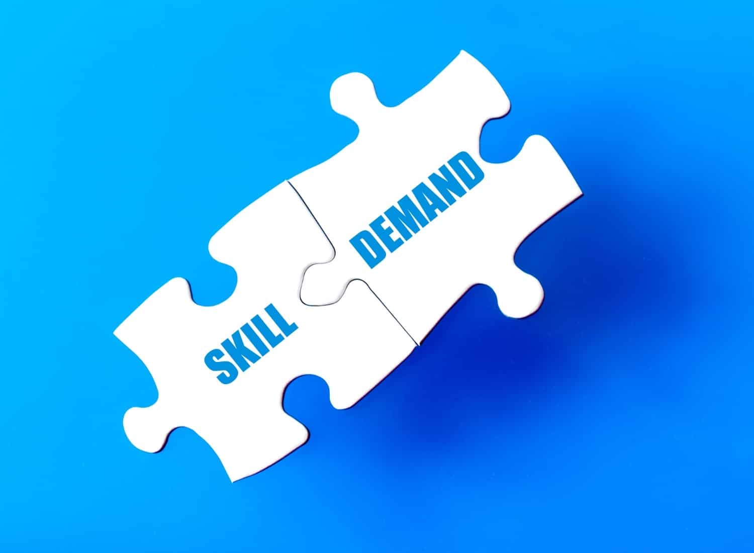 iQ Academy in demands skill in South Africa